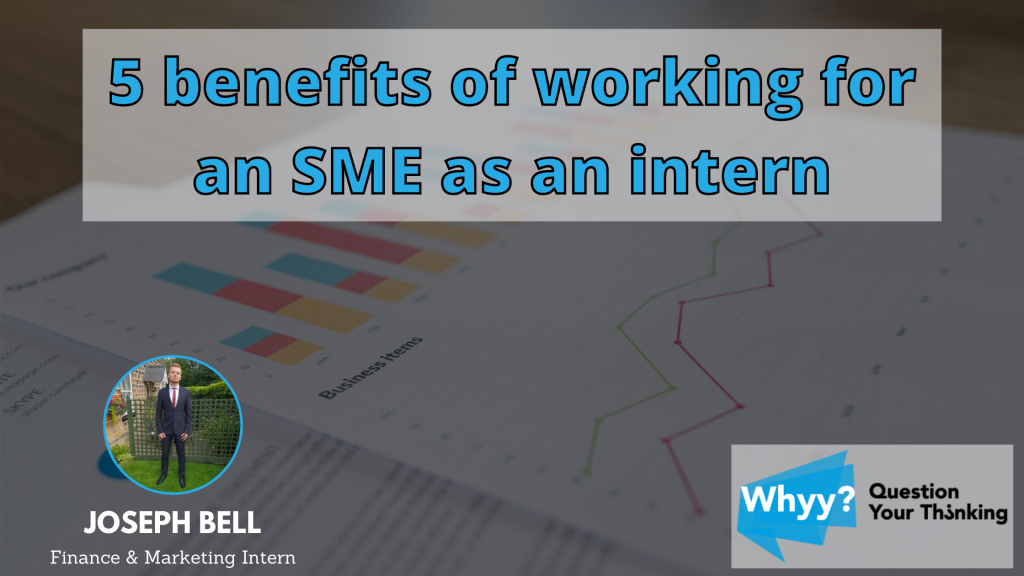 5 Intern SME benefits graph